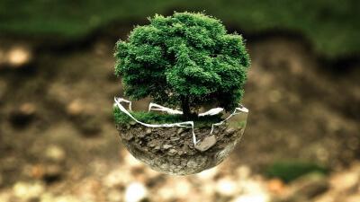 Curso Universitario de Especialización en Introducción a la evaluación del impacto ambiental