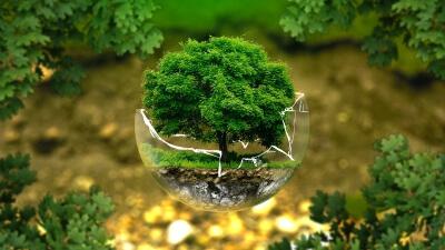 Master en Gestión y Conservación del Medioambiente: Desarrollo sostenible y Cambio Climático